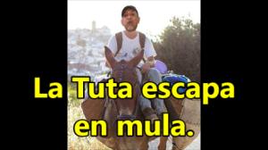 La Tuta, sin dinero, muerto de hambre y escapando en una mula: