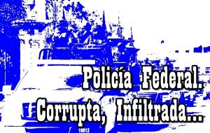 La Policía Federal viola los derechos humanos de manera sistemática: WOLA.