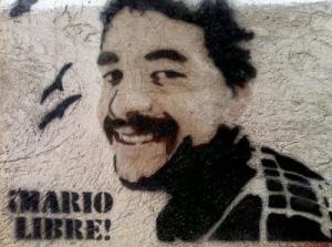 Ahora sí: ¡MARIO POR FIN ES LIBRE!  #MarioLibre.