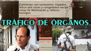 Solalinde y Autodefensas de Michoacán confirman el tráfico de órganos con complicidad del gobierno.