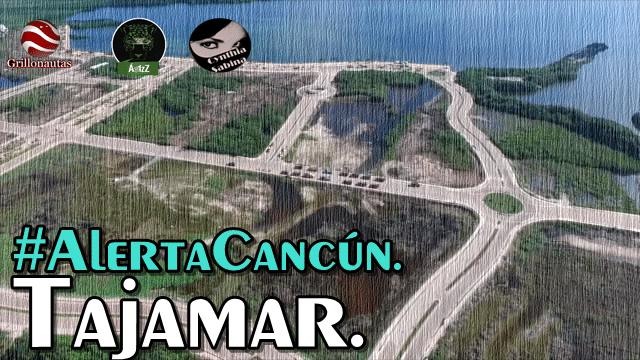 ¿Qué está pasando en Cancún? Tajamar, el ecocidio. #TajamaResiste.