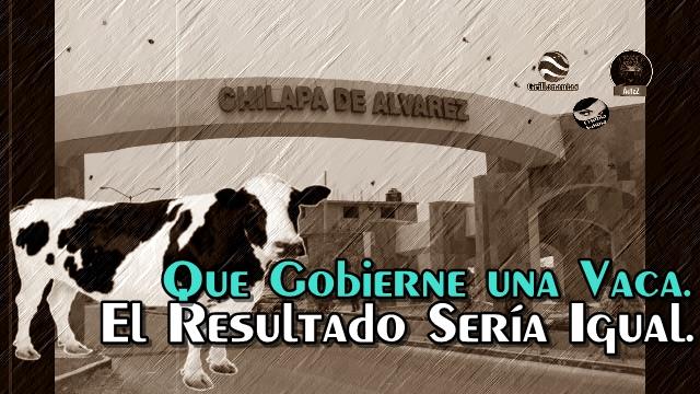 Propongo que en Guerrero gobierne una vaca, porque Astudillo no puede.