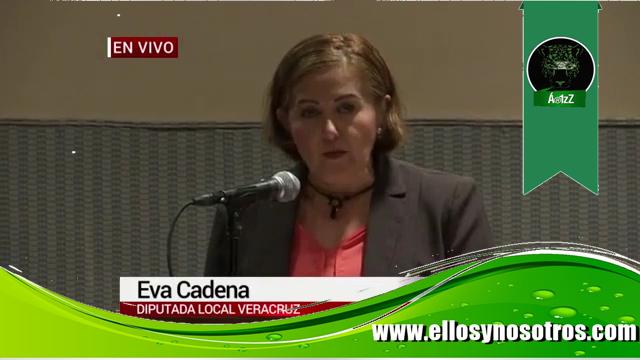 Eva Cadena acusa de financiación ilegal a Morena