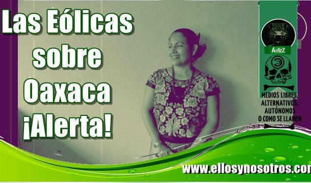 Femsa, Walmart, Cemex construirán parque eólico en Oaxaca desplazando comunidades indígenas