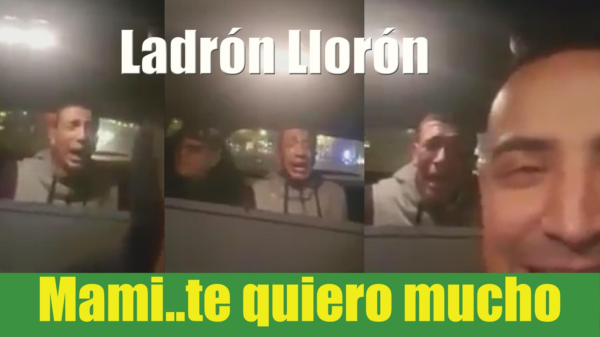 #LadrónLlorón: le pillan... y no deja de llorar y llamar a su mamá