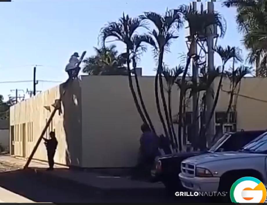 Lanzan 3 cadáveres desde avioneta en Culiacán, Sinaloa