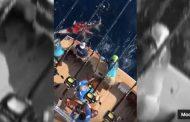 Cavernícolas, juniors, hijos de ricos, matan a balazos a un tiburón tigre en Veracruz (Video)