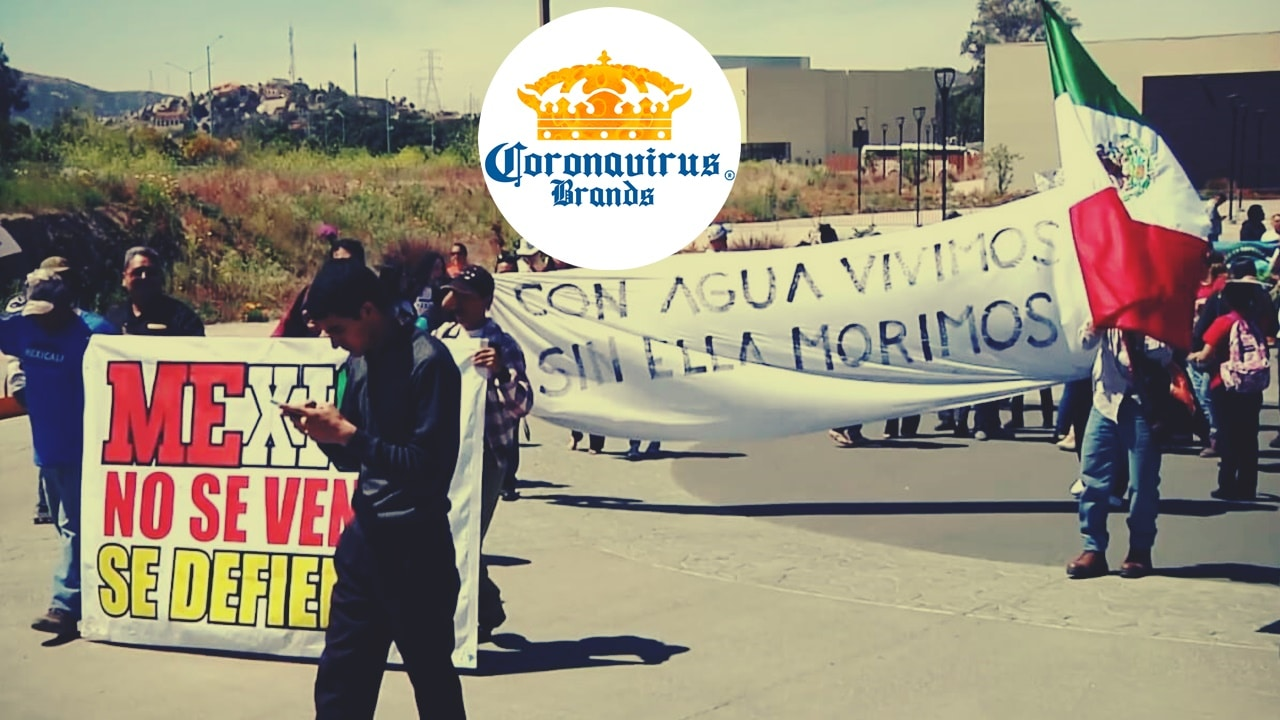 Constellation Brands pierde ante la sociedad organizada de Mexicali. Pese a ello la empresa se instalará en otro lugar de México