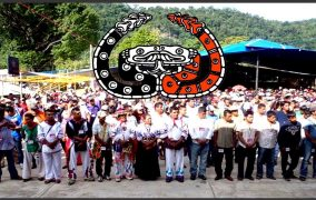 Lucha por la vida : 25 años de resistencia y rebeldía del Congreso Nacional Indígena